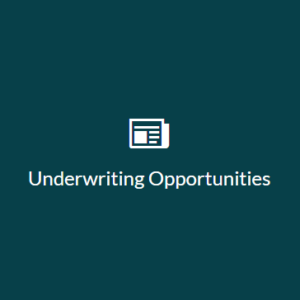 Underwriting Opportunities